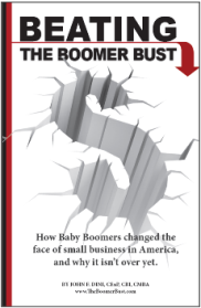 Dini-Boomer-Bust-Cover